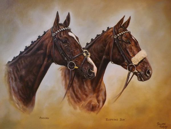 Andorn (nearside) with his stablemate 'Elspeth's Boy'
