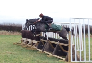 'Suggestion' - a natural on his first schooling session