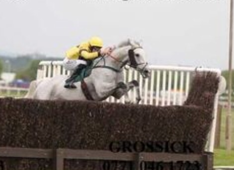 Kings Grey wins at Aintree