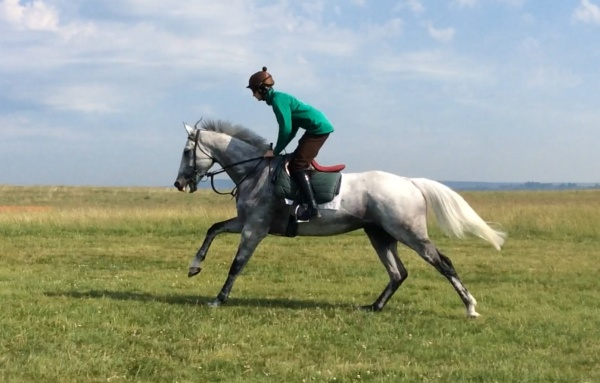 Brian and recent Aintree winner, King's Grey