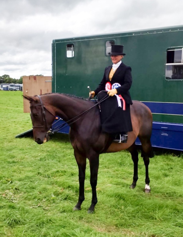 Former double winner for us ELSPETHS BOY winning the Ladies Side Saddle Class at Royal Lancs Show with new Owner Shirley Errington