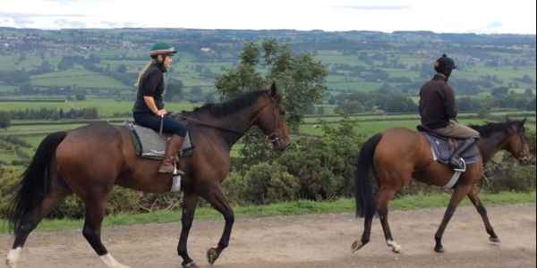 Two extremes...biggest horse on the yard 'Transient Bay' and the diminuitive 'Goldan Jess', one our smallest but the biggest heart of all.