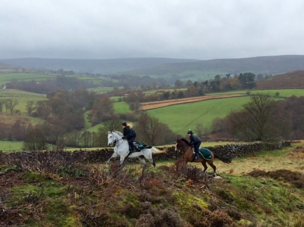 King's Grey leads Chloe's Image over the moors today in freezing conditions...