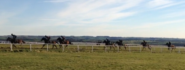 Our string up the 7f gallop
