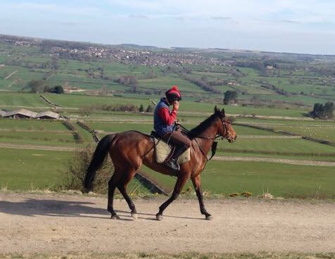 Arco - yesterday at Middleham, she had a racecourse gallop today at Southwell