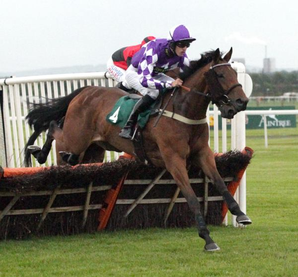 Pickworth, dual Aintree winner who can be bought in foal to Fame and Glory at DBS Goffs on Wednesday