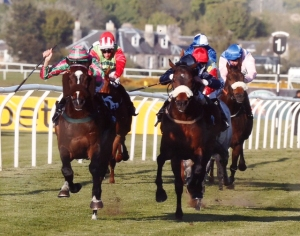 Platinum winning at Musselburgh