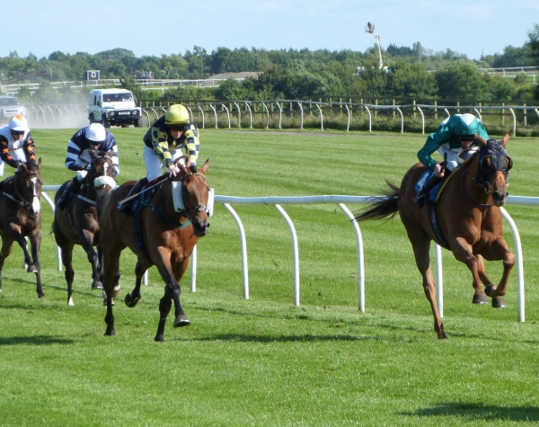 Brunello at Catterick  - photo by MIke Dunn