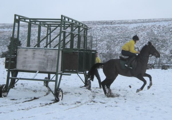 Snow doesnt stop us on New Years day in 2010...