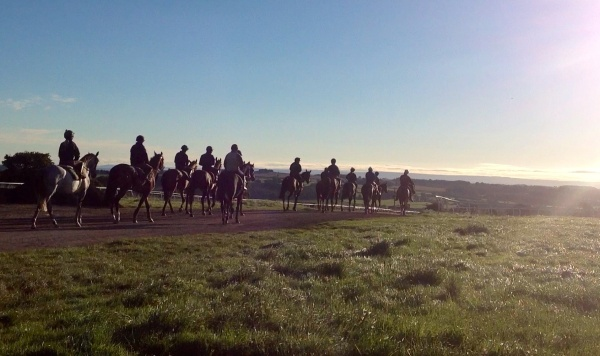 On their way to the 7furlong gallop
