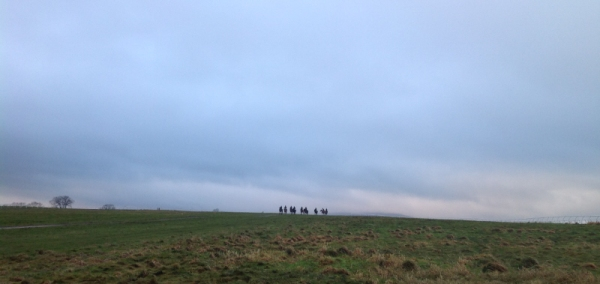 Spot our horses! The vastness of the moor at Middleham!