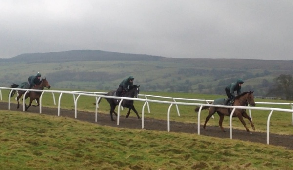 Stormy Morning leads up the gallop