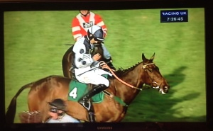 Rumble of Thunder winning at Aintree for Adam Nicol