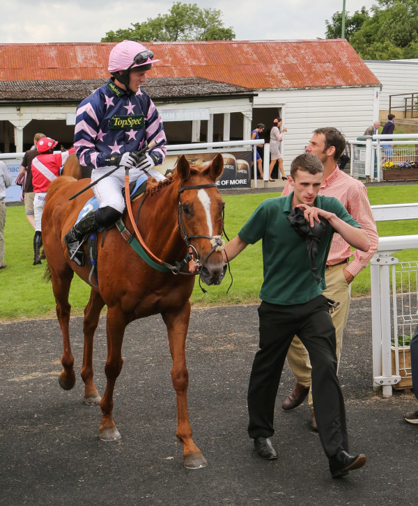 Jawaab and Adam Nicol in winning form at hexham - photo by Keith Foster