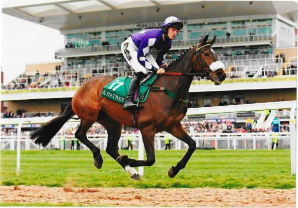 lady buttons aintree gallop