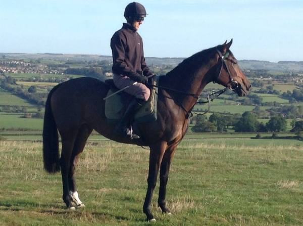lady buttons on the gallops