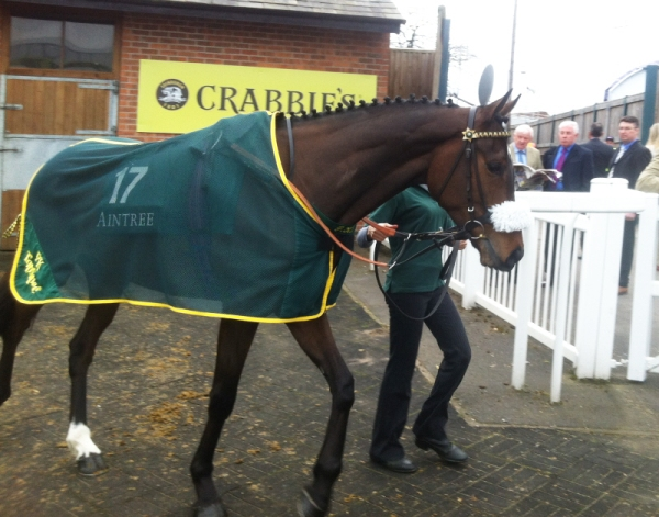 lady buttons small aintree