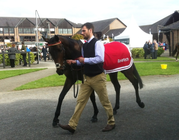 Phil with Aniknam at Punchestown