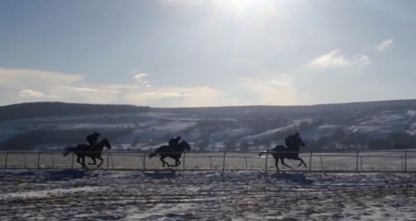 Third lot up the 7f today