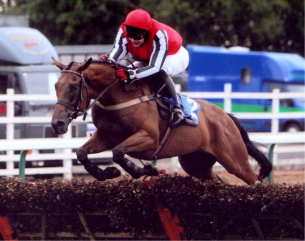 Goldan Jess wining his first race for us - at Sedgefield, ridden by Kyle James in the colours of John and June Edwards.