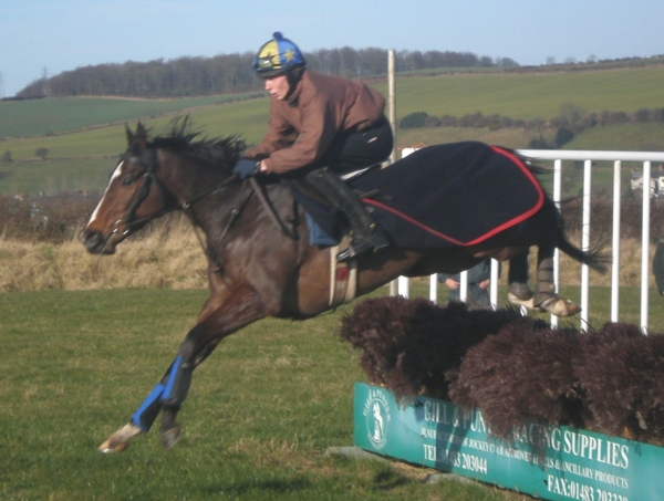 Amazing King schooling with James Reveley