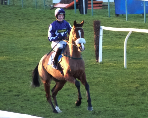 Sakhee's City - 2nd in the bumper