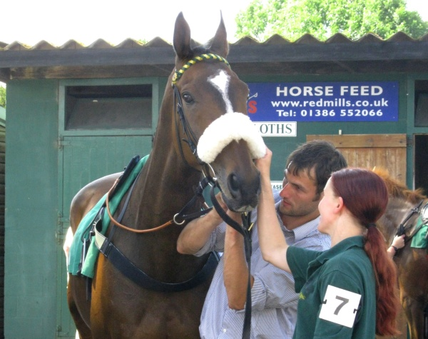 tiny uttoxeter, colin, pickworth, foals 001
