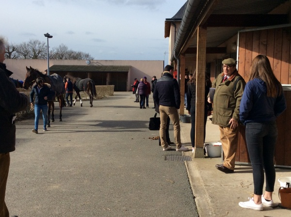 The busy stable area at Angers!