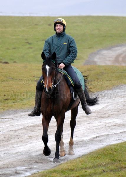 Phil riding Stenna