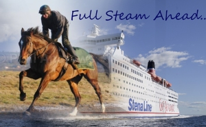 stenna steam in