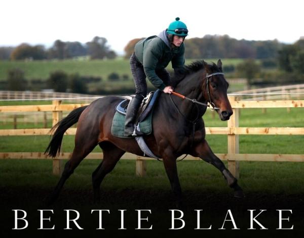 bertie-blake-2