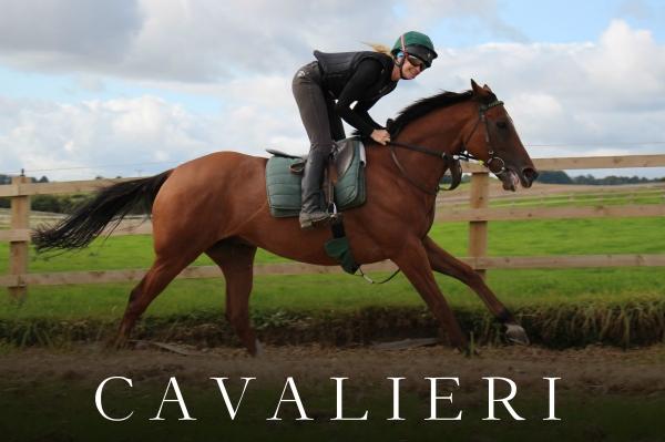 CAVALIERI (6)