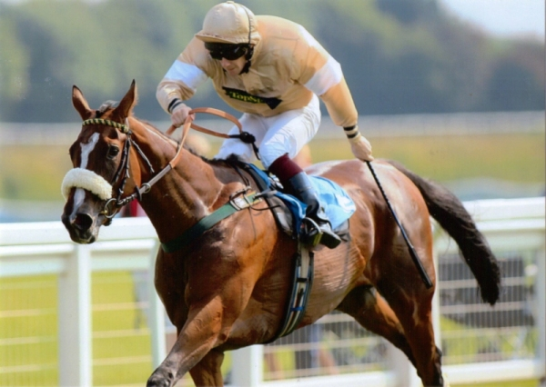 Chloe's Image winning at Ripon in 2013 when owned by Gareth Fawcett