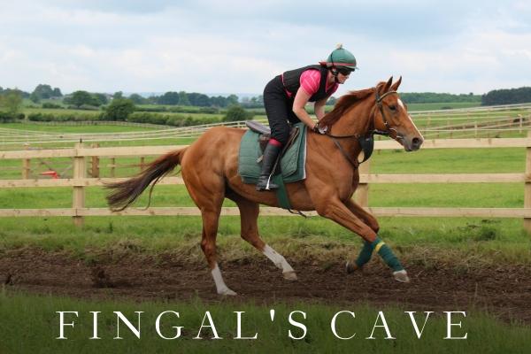 FINGALS CAVE (2)