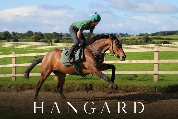 HANGARD (2)