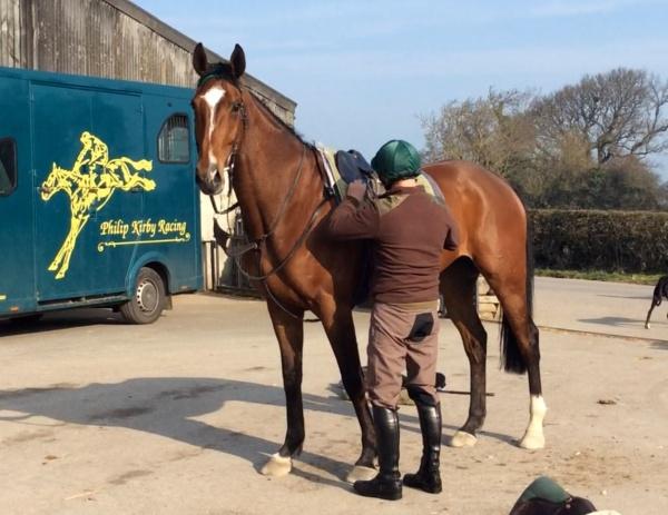 Steve Ketlewell untacking the big horse, Courtown Oscar