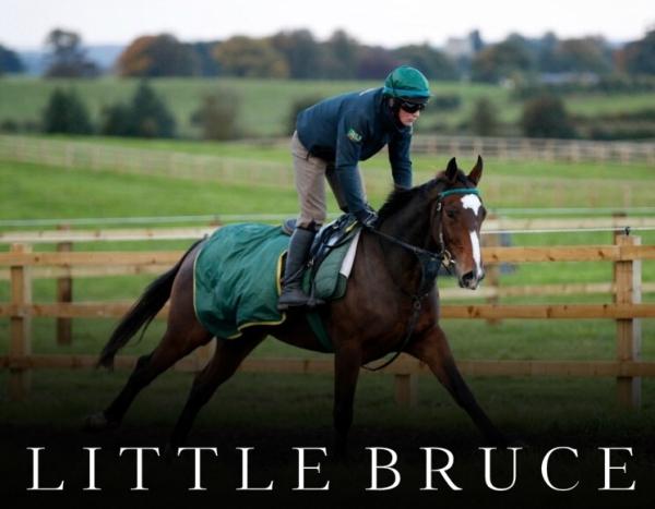little-bruce-2