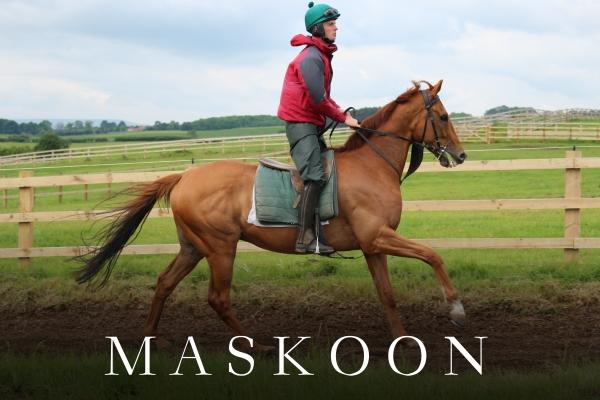 MASKOON (2).jpg