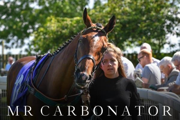 MR CARB