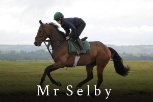 Ross on Mr Selby