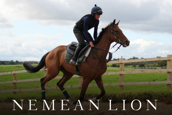 NEMEAN LION (4)