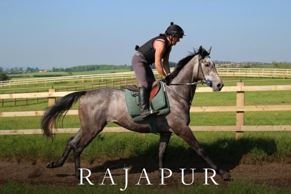 RAJAPUR (4)