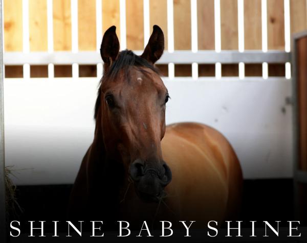 shine-baby-shine