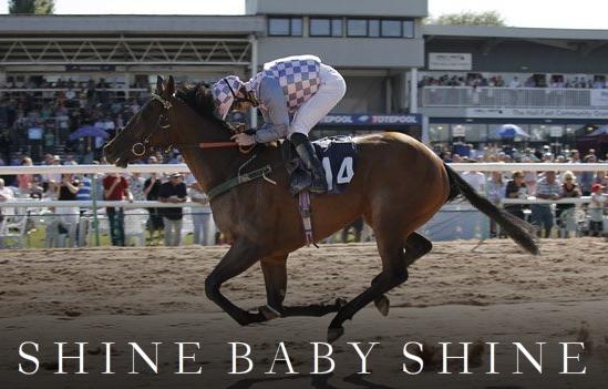 SHINE BABY