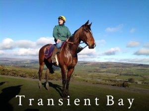 Transient Bay 2