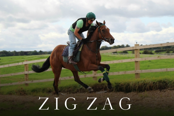 ZIG ZAG (2)
