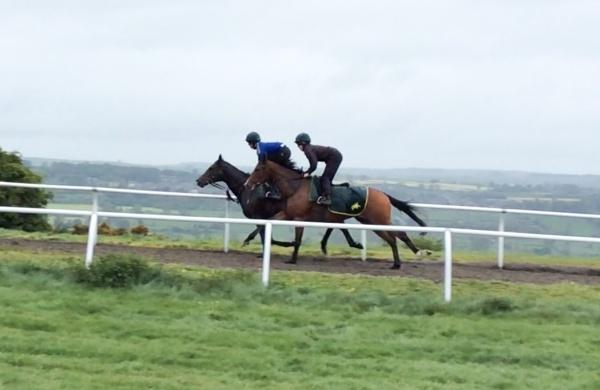 Sakhee's City gallops alongside Episode yesterday