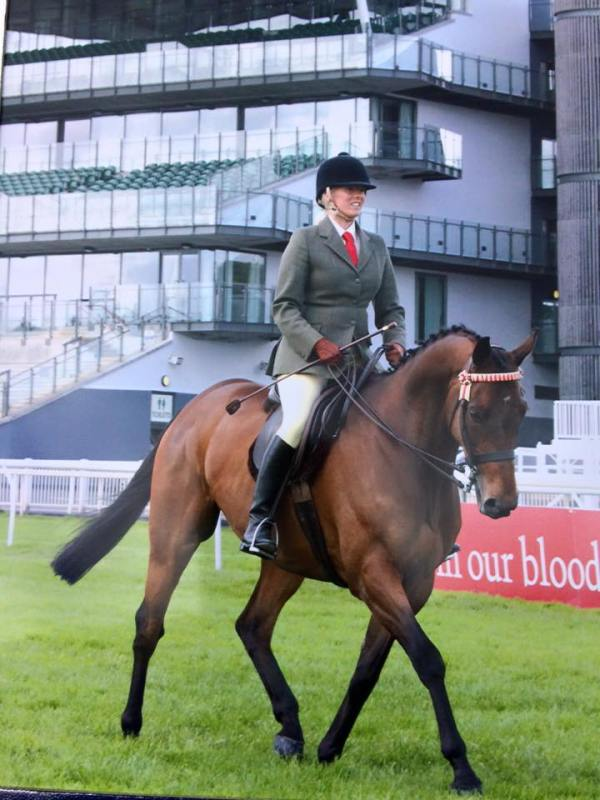 Royal Entourage wins at Aintree this weekend
