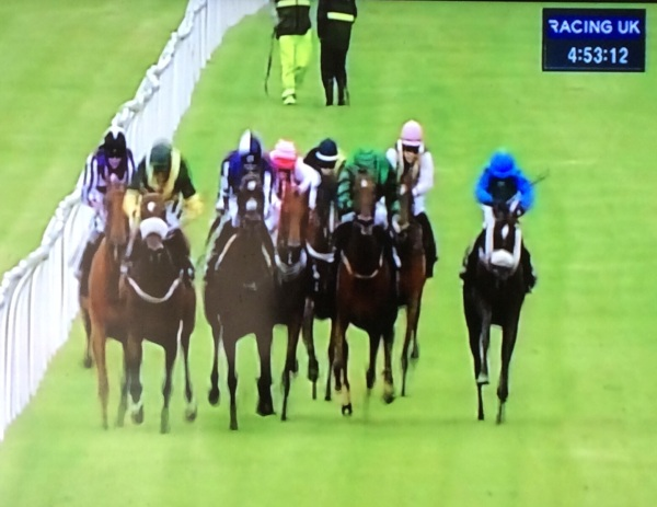 A tight finish at Musselburgh