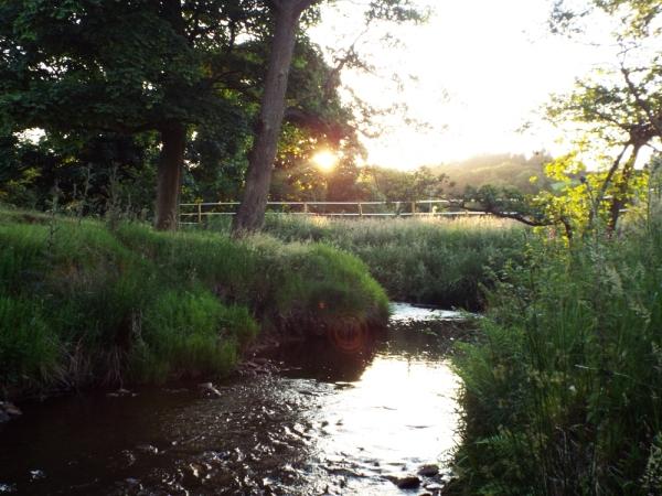 river small